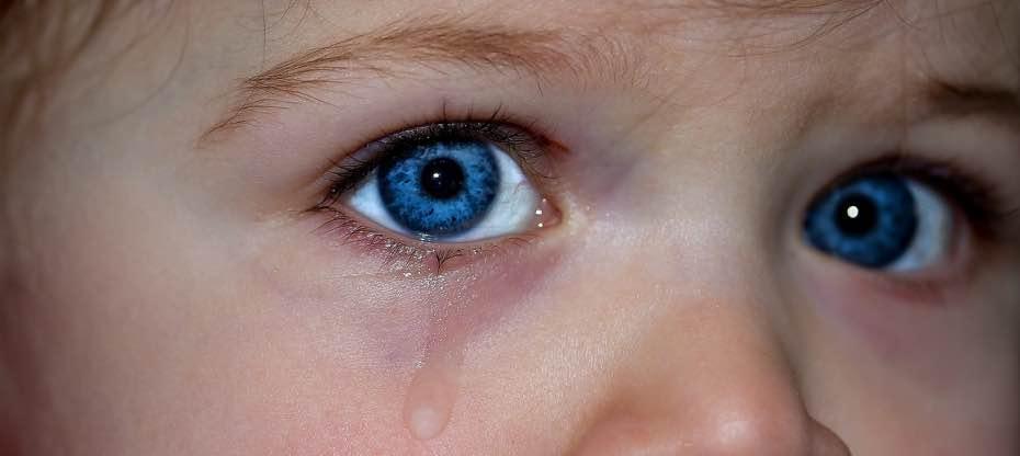 Fundación ANAR, jupsin.com, menores, acoso sexual