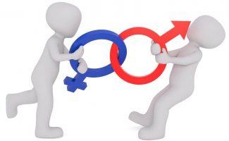 Igualdad de género, jupsin.com, eurobarómetro