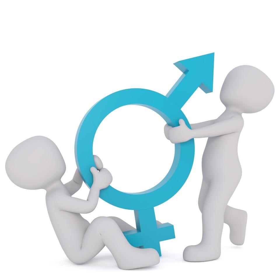 Identidad de género, transexuales