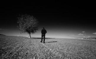 Acoso, patología de la soledad